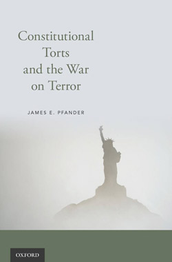 Constitutional Torts and the War on Terror book