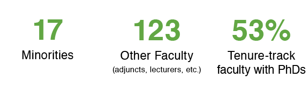 16 minorities, 115 other faculty (adjuncts, lecturers, etc.), 51% tenure-track faculty with PhDs